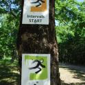 Amazing running routes for all distances coloured coordinated easy to follow with great signs