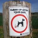 Clean up after your dog please!