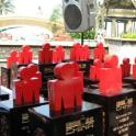 IronMate Photo - Ironman China Age Group Trophies
