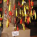 IronMate Photo - Ironman Triathlon China Wishing Tree