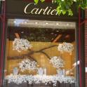IronMate Photo - Cartier Celebrate The Chelsea Flower Show