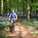 IronMate Photo - Mark In Bluebell Wood Ivonhoe Buckinghamshire