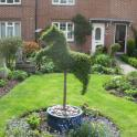 IronMate Photo - A Hedge In The Shape Of A Dog